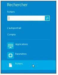 Les-domaines-de-recherche-de-Windows-8.1