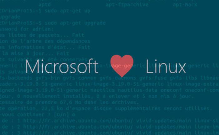 Microsoft arrête de basher Linux et intègre ses outils dans Windows 10